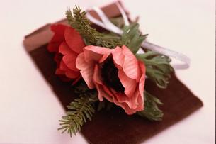 赤い花の写真素材 [FYI03235472]