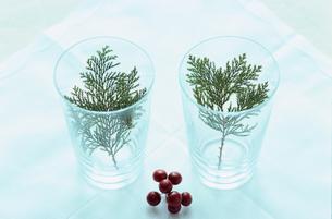 グラスの中の葉と赤い実の写真素材 [FYI03235473]