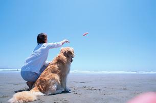 ビーチでフリスビーを投げる女性と犬の写真素材 [FYI03235682]