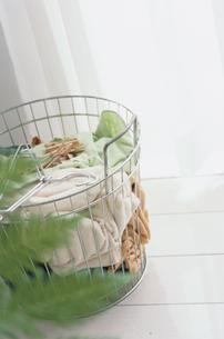 植物越しのスチールのランドリーボックスの写真素材 [FYI03235726]