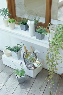 窓辺のテラスに並ぶ鉢植えの写真素材 [FYI03235942]