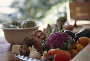 野菜の盛り合わせの写真素材 [FYI03236121]