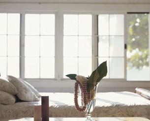 ベッドの脇にあるレイの写真素材 [FYI03236158]