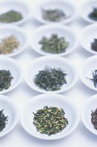中国茶各種の写真素材 [FYI03236491]