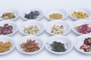 中国花茶各種の写真素材 [FYI03236493]