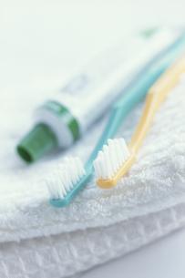 白タオルの上に歯ブラシ2本と歯ミガキ粉の写真素材 [FYI03236692]