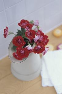 白い水差しに生けた赤いバラの写真素材 [FYI03236706]