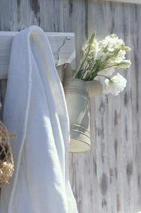 フックにかけたバスローブと水差しに白デルヒニューム等の写真素材 [FYI03236707]