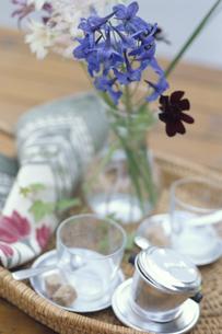 ピッチャーにいけた花とグラス2個の写真素材 [FYI03236734]