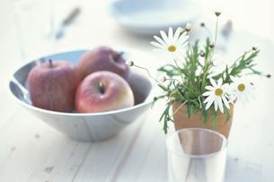 鉢植えマーガレット・シルバー器にリンゴ3個・グラス等の写真素材 [FYI03236839]