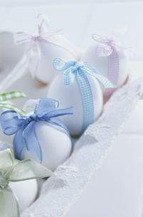 卵の写真素材 [FYI03237097]