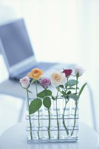 花とパソコンの写真素材 [FYI03237174]