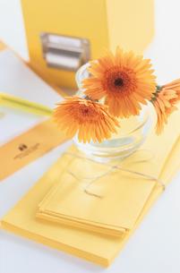 封筒と花の写真素材 [FYI03237207]