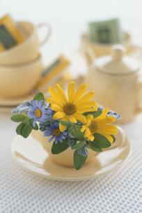 ティーカップに活けた花とティーセットの写真素材 [FYI03237342]