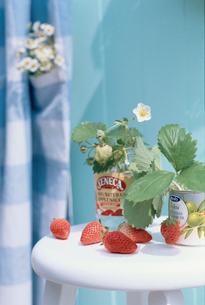 スツールの上のイチゴと缶に活けた花の写真素材 [FYI03237344]