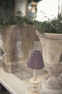 植木鉢や鳥かごの写真素材 [FYI03237498]