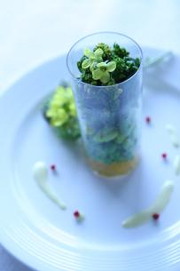 コップの中の菜の花 そらまめ グリンピースの写真素材 [FYI03237623]