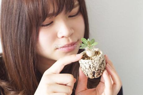 植物と女性の写真素材 [FYI03237817]