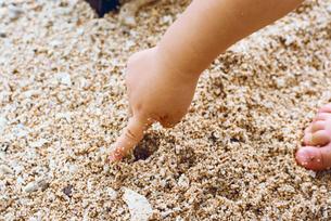 砂浜 子供の手元の写真素材 [FYI03238199]