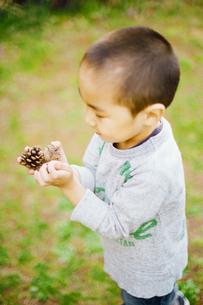 松ぼっくりを拾う男の子の写真素材 [FYI03238235]