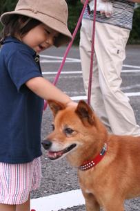 犬の散歩をする親子の写真素材 [FYI03238394]