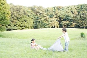 芝生でクロスを広げる女の子と男の子の写真素材 [FYI03238428]