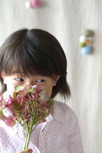 あじさいの匂いをかぐ女の子の写真素材 [FYI03238572]
