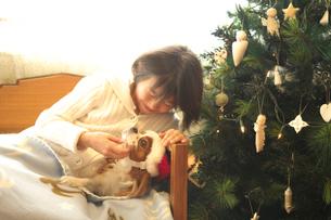 犬をなでる女の子の写真素材 [FYI03238627]