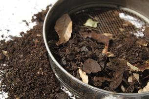 篩と腐葉土の写真素材 [FYI03239618]