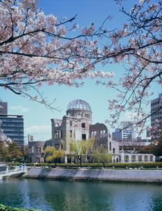 原爆ドームと桜の写真素材 [FYI03240486]