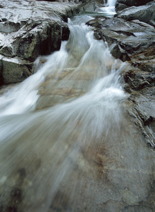 渓流の写真素材 [FYI03240636]
