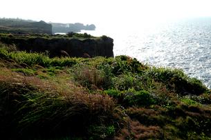 青い水平線の海に広がる万座毛の奇岩の写真素材 [FYI03240873]