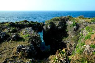 青い水平線の海に広がる万座毛の奇岩の写真素材 [FYI03240900]