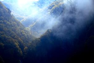 朝霧が立ち込める志賀高原、カンマン滝の絶景の写真素材 [FYI03241021]