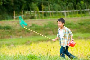網を持った子供の写真素材 [FYI03241275]