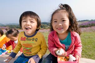 お花畑でお弁当を食べる子供達の写真素材 [FYI03241289]