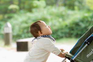 公園で遊ぶ赤ちゃんの写真素材 [FYI03241294]