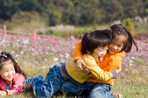 お花畑で遊ぶ子供達の写真素材 [FYI03241312]