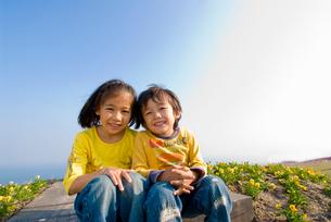 お花畑で遊ぶ子供達の写真素材 [FYI03241319]