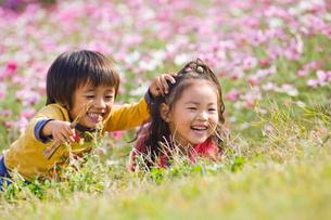 お花畑で遊ぶ子供達の写真素材 [FYI03241322]