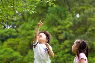 公園で遊ぶ女の子と男の子の写真素材 [FYI03241347]