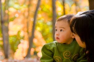 秋の林で遊ぶ赤ちゃんの写真素材 [FYI03241368]