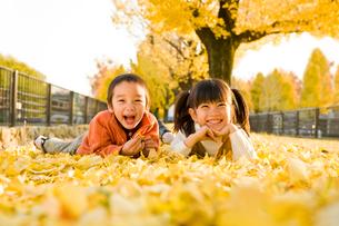 落ち葉に寝転ぶ男の子と女の子の写真素材 [FYI03241684]