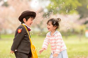 桜の公園で幼稚園の制服を着た子どもの写真素材 [FYI03241740]