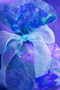 青と水色系のリボンの写真素材 [FYI03241981]