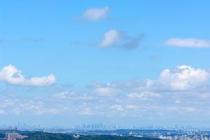 遠くから見た東京都心の風景の写真素材 [FYI03243822]