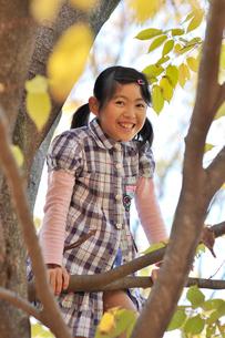 樹に上る女の子の写真素材 [FYI03243833]