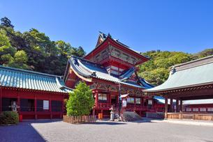静岡浅間神社 大拝殿の写真素材 [FYI03244047]