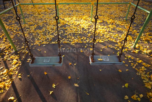ブランコと落葉の写真素材 [FYI03244470]