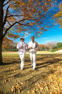 ジョギングをするシニアの夫婦の写真素材 [FYI03244695]